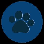 Redes de Proteção para Pets